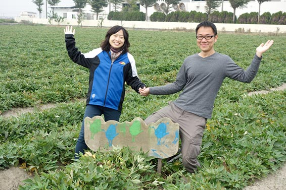 Farmer be your guide~eco-friendly sweet potato farm